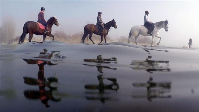 جولات لاستكشاف الطبيعة في بورصة على ظهور الخيول